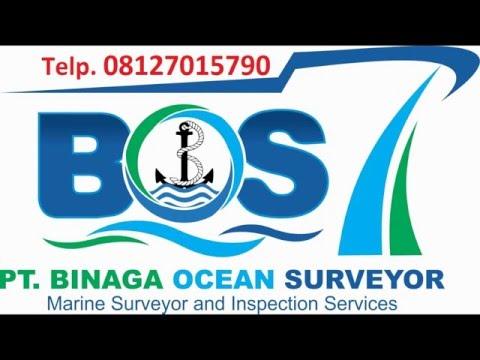 Crew Data. Сервис поиска вакансий для моряков и подбора