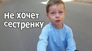 VLOG: Клим не хочет сестрёнку / Наш попугайчик подрос / Имя для попугая
