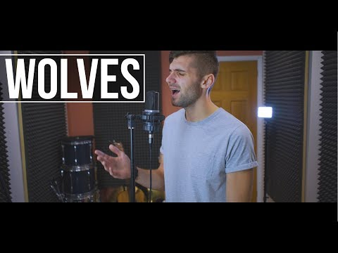 Selena Gomez, Marshmello - Wolves (Acoustic Cover By Ben Woodward)