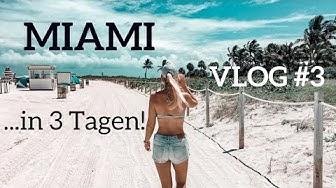 Miami Sehenswürdigkeiten & Highlights  | VLOG #3