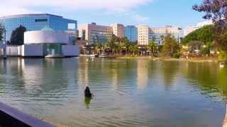 Le Parc Phoenix - Nice
