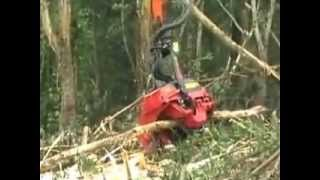 Hitachi ZX 210F / MF and Waratah Forestry Attachment Harvester Head HTH616