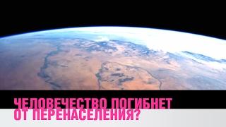 Человечество погибнет из за перенаселения?