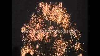 Sky Titan 60g Cannister Shells-Dominator Fireworks-Relodable Artillery