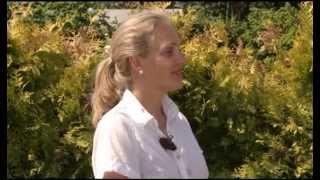 видео Ирис на дачном загородном участке в ландшафтном дизайне