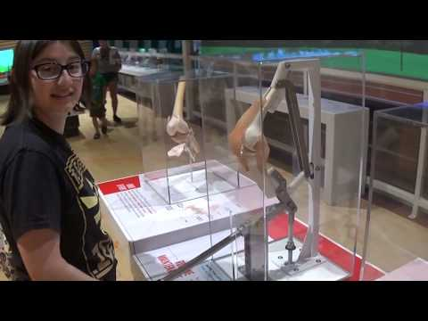 Our Trip to the Franklin Institute in Philadelphia