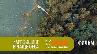 Карпфишинг в чаще леса ФИЛЬМ