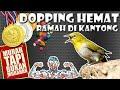 Doping Pleci Murah Bikin Pleci Bukpar  Mp3 - Mp4 Download