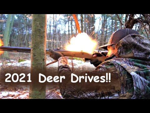 DEER DRIVES with FLINTLOCKS! (Deer Everywhere) – Flintlock Muzzleloader PA Deer Hunting 2021