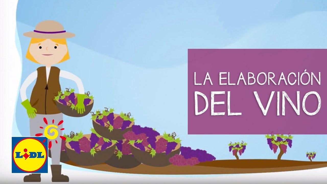 Circuito Productivo Del Vino : La elaboración del vino tierra de vinos youtube