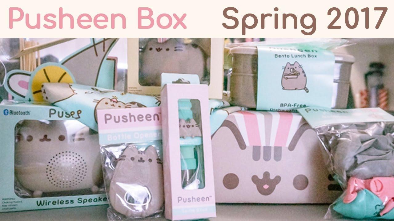 Pusheen Cat Lunch Box