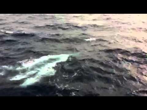 Torpedo Launch