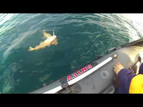 Бюджетная электрокатушка. Шуруповерт на морской рыбалке