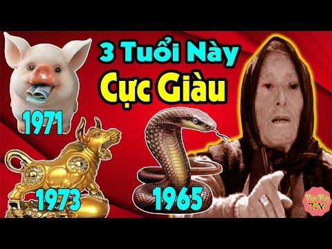 VẬN TÀI LỘC 3 Tuổi TÂN HỢI 1971, QUÝ SỬU 1973, ẤT TỴ 1965 Cuối Năm 2020, 3 Con Giáp MAY MẮN NHẤT