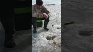 Рыбалка Капчагай