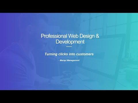 Professional Web Design & Web Development Services