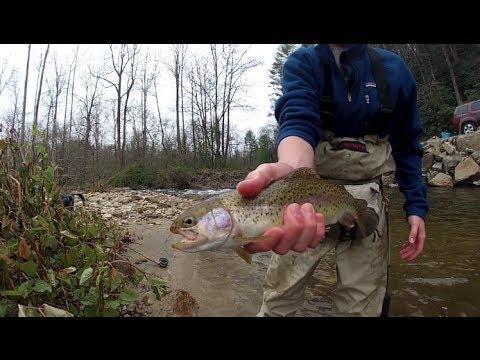 Wilson creek nc monster trout flyfishing funnydog tv for Carolina fishing tv
