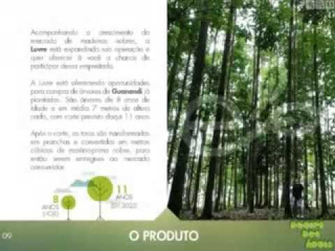 Vídeo Curso de agronegócio