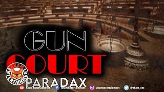 Paradax - Gun Court [Audio Visualizer]