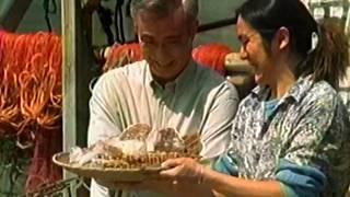 ハウス食品『シーフードのためのカレーです。』 CM 【中村吉右衛門】 1998/09
