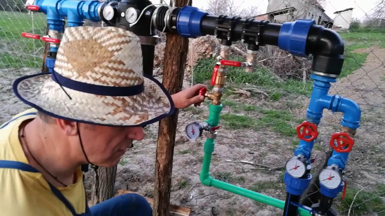 Gajenje - Uzgoj Borovnice, plantaza prva vegetacija selo Rakovac 2017 by ATP Irrigation