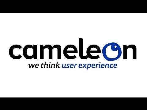 Découvrez CAMELEON GROUP : agence retail marketing et merchandising cross canal
