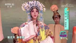 [梨园闯关我挂帅]京剧《大唐贵妃》选段 演唱:于毅| CCTV戏曲