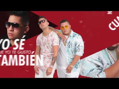 Adicto - Sammy & Falsetto ( Video Lyric )