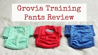 Cloth Training Pants Review | GroVia My Choice Trainers