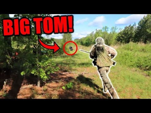 CHARGING AT A BIG TURKEY! Turkey Hunting At It's FINEST!