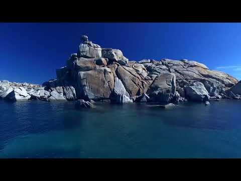 OG Picoty 2018 shortfilm finalist - Kingdom of Groupers