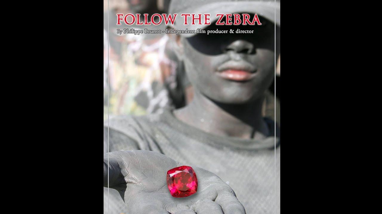 cd0128e9e Follow the Zebra