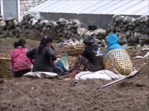 Guillermo Rogel.  Corto Audiovisual Himalaya 2015