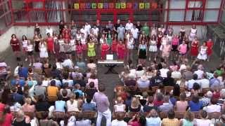 Grosser Chor auf der LGN-Sommerserenade 2014