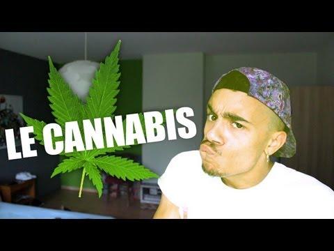 MISTER V - LE CANNABISde YouTube · Durée:  4 minutes 15 secondes