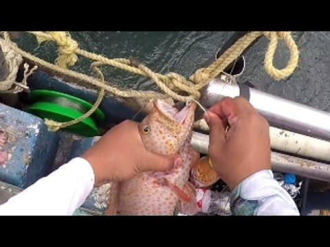 HAND LINE Reef Fishing - Down The Islands - Trinidad Caribbean