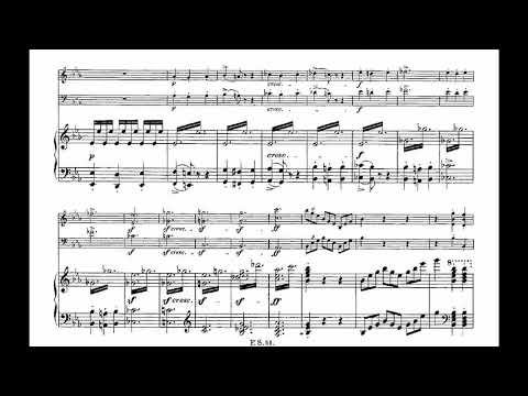 Franz Schubert - Piano trio in E flat major No.2, op.100 (w/ score)