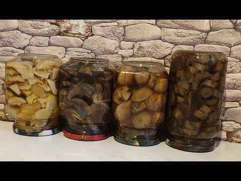 Рецепт приготовления грибов от Грибоискателя !!! Маринованные грибы ! Грибы 2019 !