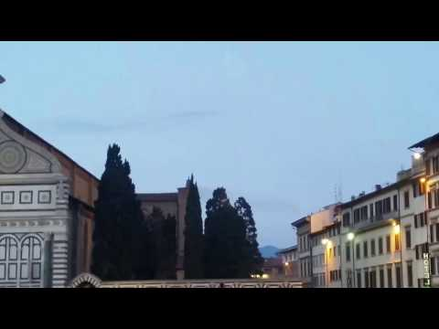 Birds in flight over Florence Italy