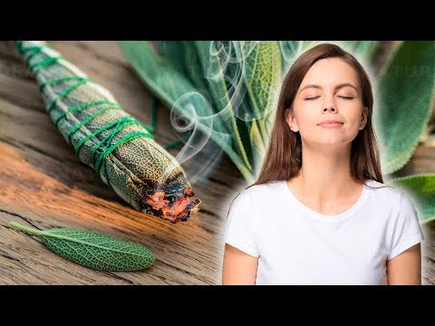 Burning Sage Can Clean The Air And Improve Your Health
