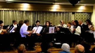 """תזמורת """"מצלול"""" - בטהובן - מנצחת וסולנית נינה ליבנסון"""
