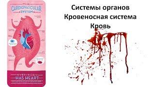 6.1 Кровь (8 класс) - биология, подготовка к ЕГЭ и ОГЭ 2019
