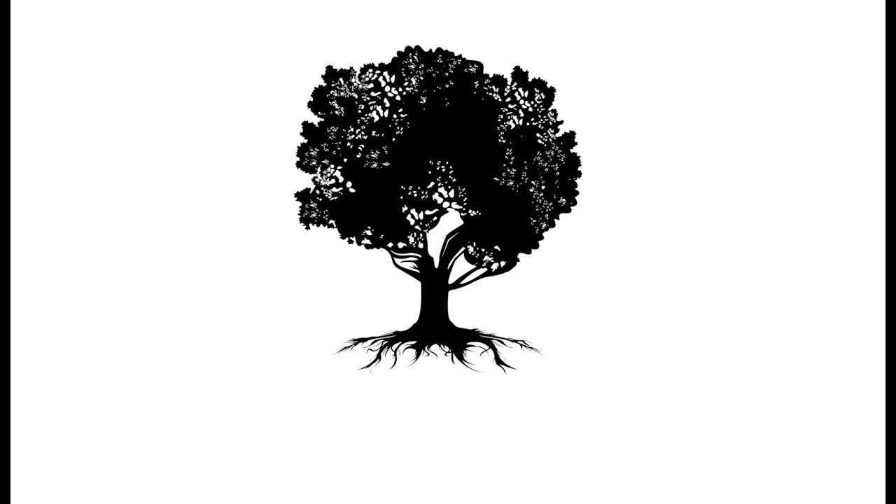 medium resolution of the magnolia s root system dr neil hendrickson