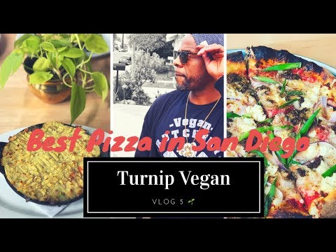 Best Vegan Pizza In San Diego Vlog 5 Turinp Vegan