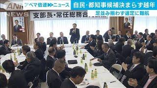 来年7月の都知事選 自民都連の候補者選びは難航(19/12/23)