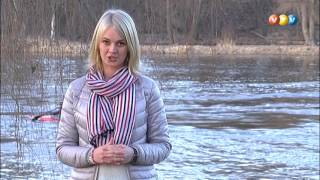 """Vidzemes Televīzijai cetrutdaļgadsimts. Raidījums """"Ciemos gaidījt?"""" (25.03.2017.)"""