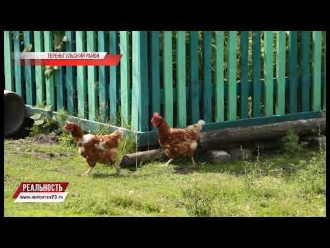 знакомства для взрослых ульяновск