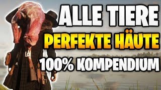 Red Dead Redemption 2: ALLE Tiere Perfekte Häute & Felle - 100% Kompendium | Jagd Anfragen Tipps