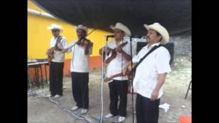 Mi amor es para ti - Los Jilgueros de Atarjea, Guanajuato