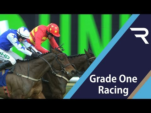 2019 Chanelle Pharma Novice Hurdle - Racing TV